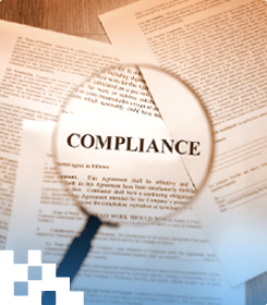 small business compliance questions